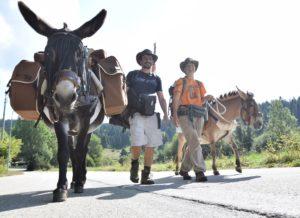Heureux comme Marius : Stéphane Blaise et Céline Bugnon ont tout quitter pour marcher avec un âne et une mule pendant trois ans... Ils étaient de passage à Pontarlier.
